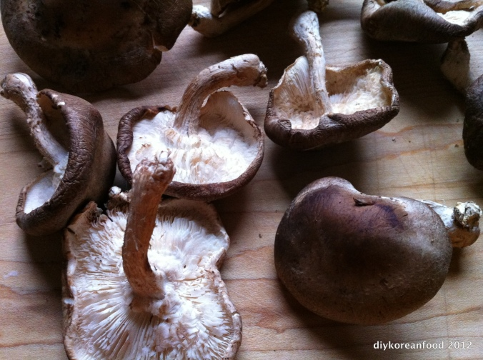 Start with shiitake