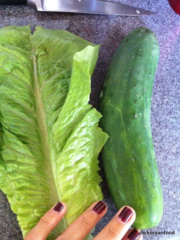 Leaf and Cuke