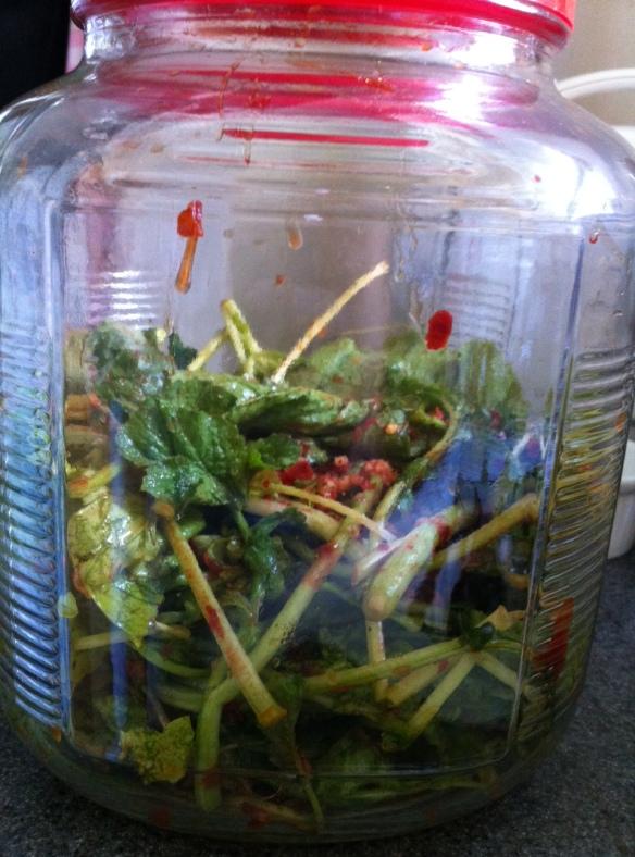 Kimchify your radish greens