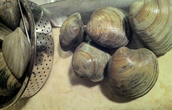 The 12 clams of Xmas