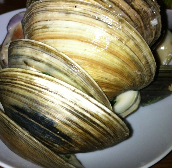 Clam-or for more!