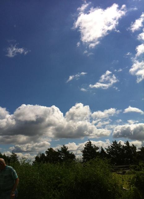 Of sky