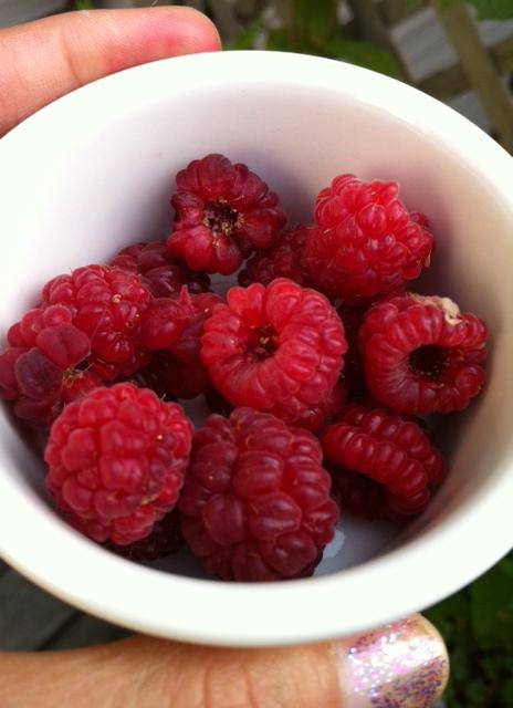 Red crop